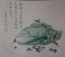 Chinese Watercolor Painting of Chinese Cabbage and Cricket,meaning of much richness,Signed and sealed Yu Fei An, Hanging scroll