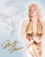 MONROE GOLD DRESS METAL SIGN #26642v2