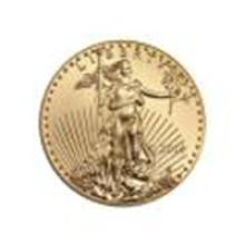 2014 American Gold Eagle 1/2 oz Uncirculated #49043v2