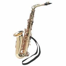 Maxam Alto Saxophone #49529v2