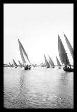 Fleet of Native Boats on the Nile 12x18 Giclee on canvas #75198v2