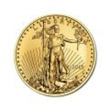 2015 American Gold Eagle 1/2 oz Uncirculated #49042v2