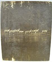•RADCLIFFE DUGMORE (1870-1955)  Wild Life  three photographs, toned silver prints, two Newfo