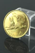Chinese Yearly Coin Rabbit