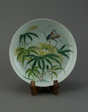 Chinese Famille Rose Plate Painted Insect Qianlong