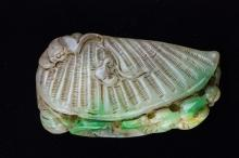 Chinese Jadeite Carved Shell Hand Pendant