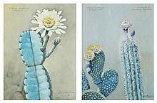 ETIENNE CLERISSI (1888-1971) Etudes botanique, plantes grasses