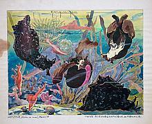 MUSEE OCEANOGRAPHIQUE DE MONACO, 1960 Aplysie, lièvre de mer, Méditerranée
