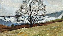 Alexander Dunluce (b.1934) Winter Tree, Glenarm