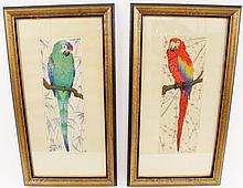 Pair of Martin Erich Philipp Parrot Prints