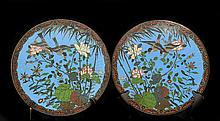 Pair of Chinese Antique Cloisonne Plates