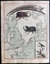 Edwards, George C1817 Hand Coloured Map of the British Isles - Itinera Varia Auctoris
