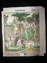 Schedel, Hartmann 1493 Woodcut of Adam & Eve from the Nuremberg Chronicle