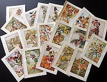 Barker, Cicely Mary C1940 Lot of 48 Flower Fairies Prints
