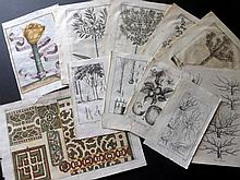 Botanical Prints 17th - Early 19th Century. Lot of approx 33 Copper Engravings.