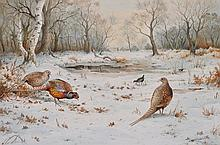 Carl Donner (Contemporary) PHEASANTS AND MOORHEN IN THE SNO