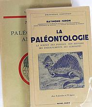 Lot de 2 ouvrages sur la paléonthologie