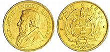 Afrique du sud - Pound 1894