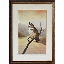Bruno Ertz, (Wisconsin/Illinois;1873 - 1956), Long Eared Owl, watercolor, 21