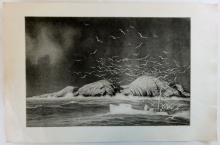Lobsterman at sea with sea gulls, Original Etching, Circa 1930