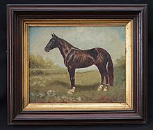 O/C Horse Signed Willett