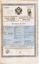 Kingdom of Lombardy Venetia under Austro-Hungarian Empire. Ancient passport 1860 circa. Expiry date 1875 AD. Validity for Austro-Hungarian territories, Swiss and Germany Kingdom. With revenues of 15 kr. Very rare