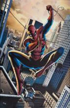 Spiderman on canvas Limited edition Hand signed by Alex Ross