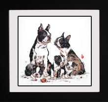 Bull Terriers Limited Edition Stella Kwan