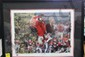 Collage Print. Signed Herschel Walker/Vince Dooley. w/COA
