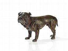 Bergmann Vienna Bronze, English Bulldog, around 1920