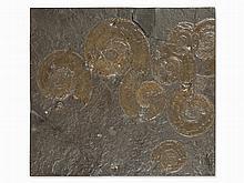 Fossil Slab with Ammonites, Posidonia Shale, Holzmaden, Jura