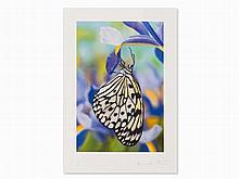 Damien Hirst, Love Prints - Paper Kite Butterfly, Inkjet, 2011
