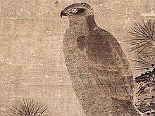 Kozan Toei - attributed, 'Hawk on Pine Tree', Japan, Edo