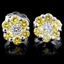 18K White Gold 0.50ctw Fancy Color Diamond Earring