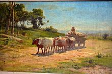 Gordon Coutts, oil on canvas on board, bullock