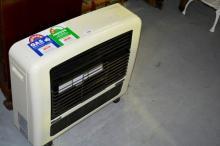 Rinnai natural gas heater. Model is Granada, mk II