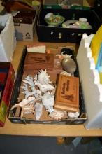 Box of large collection of shells, some in vintage