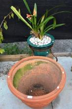 2 x garden items, one a large terracotta planter &