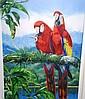 Gordon Hanley Lim Ed Giclee print 'Scarlet Macaw'