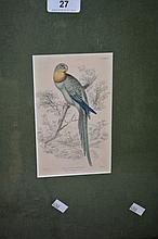 W H Lizars, hand coloured steel engraving,