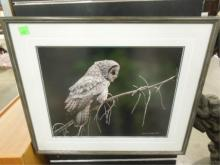 Thomas Mangelsen, photo print, Owl