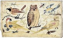 Italienisch: 17. Jh. . Studienblatt mit Uhu, Papageien, Singvögeln und Insekten