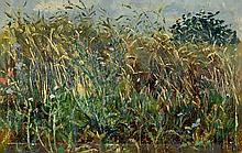 Tübbecke, Paul Wilhelm: Feldrain mit Mohnblumen und wilder Distel
