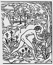Hohe Lied, Das und Hofmann, Ludwig von - Illustr.: Mit Orig.-Holzschnitten von L. von Hofmann