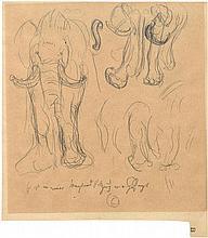 Corinth, Lovis: Studie eines Elefanten