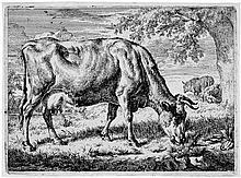 Velde, Adriaen van de: Die grasende Kuh