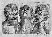 Fialetti, Odoardo: Tutte le parti del corpo humano