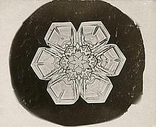 Bentley, Wilson A.: Snowflake