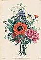 Prévost, Jean-Louis: Collection des fleurs et des fruits.