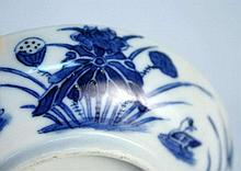 Chinese Qieng Dynasty Kangxi Blue and White Porcelain P